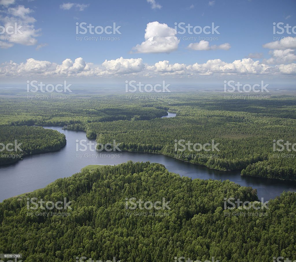 green forest plain stock photo