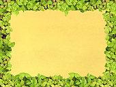 istock Green frame paper 116636868