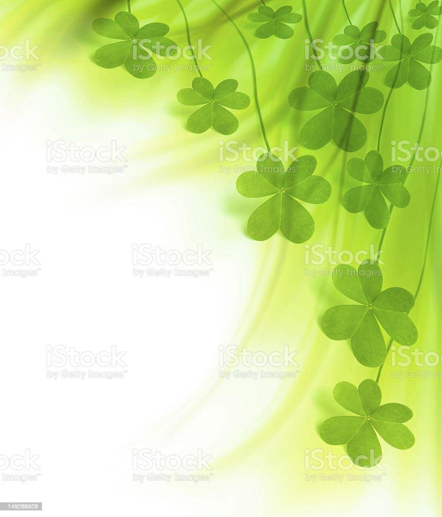 Green fresh clover border royalty-free stock photo