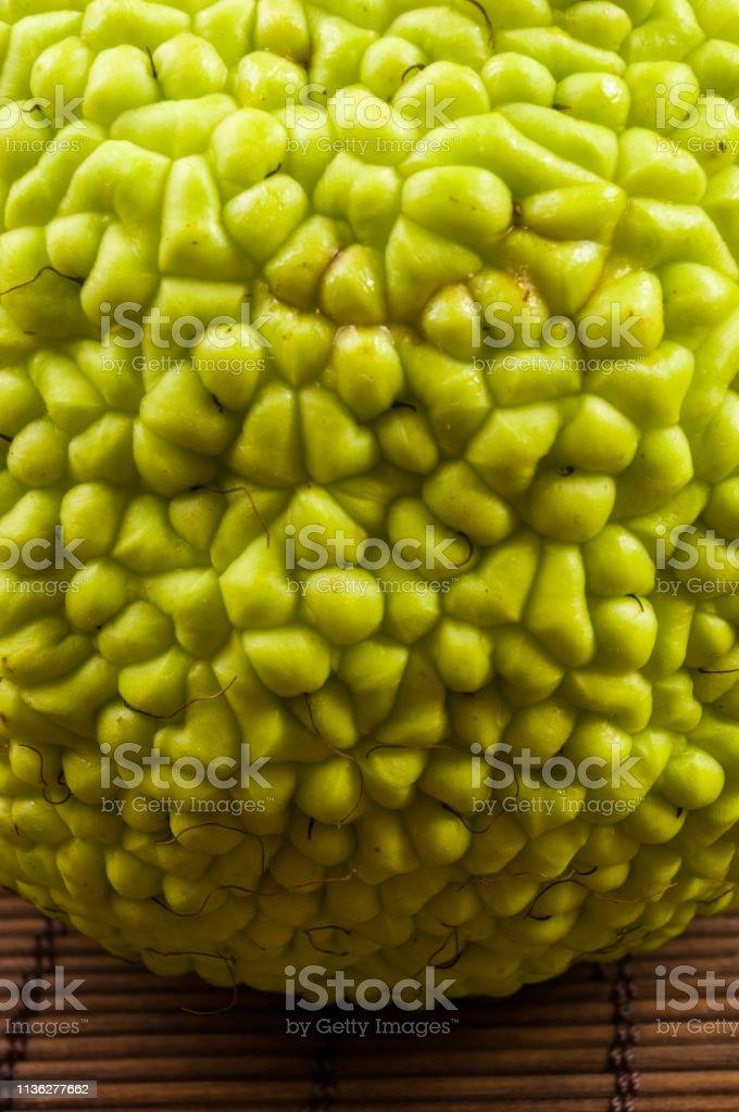 Green fruit of maclura pomifera, osage orange, horse apple, adam apple grow on bamboo mat stock photo
