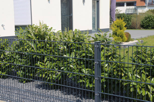 Green garden fence as property fence line stock photo