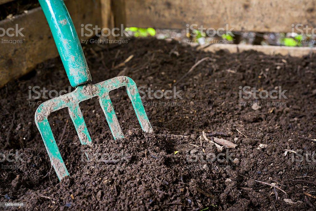 Green garden fork in dark brown dirt stock photo