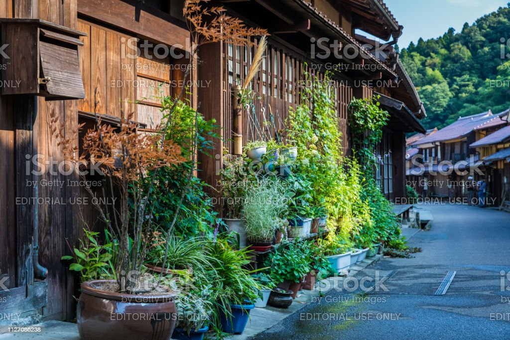 Green Gardens of Ohmori, Iwami Ginzan stock photo