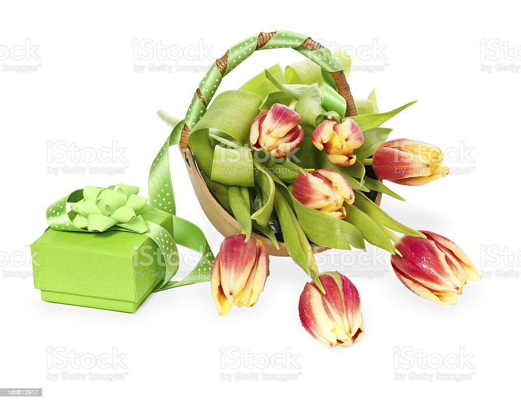 Green gift box and tulips on white background royalty-free stock photo