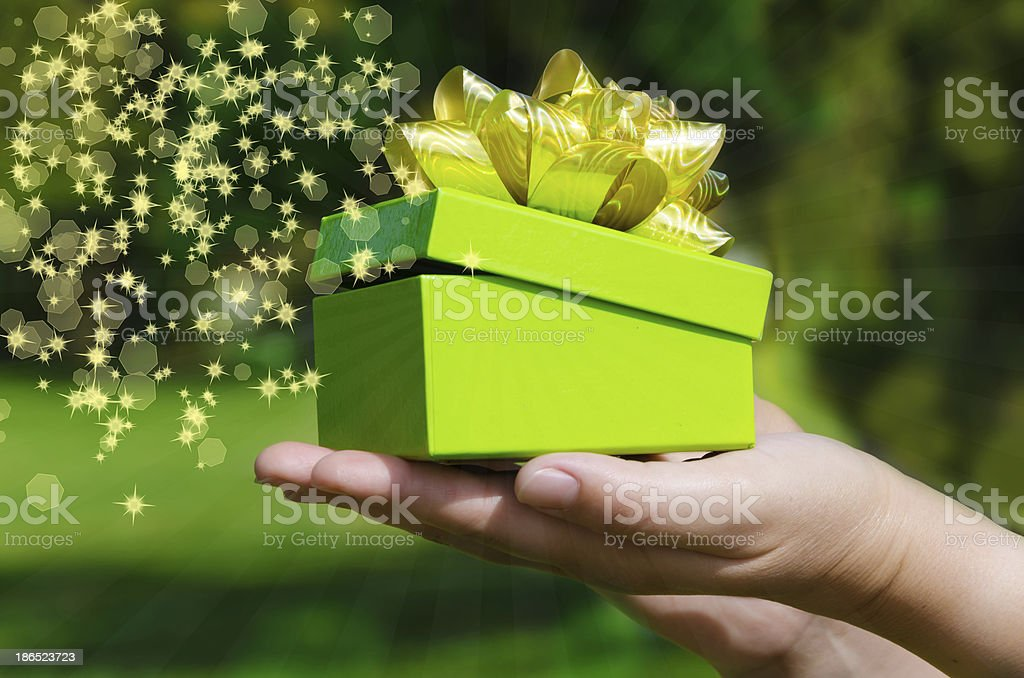 Green Gift box in woman's hands royalty-free stock photo