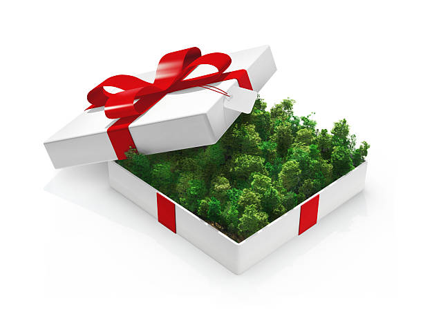 green gift - amazon gift card stock photos and pictures