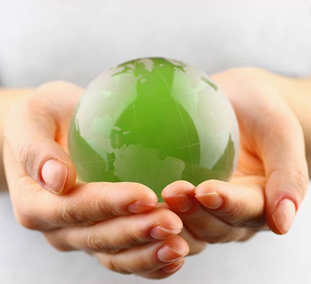 grüne erde in händen - lernfortschrittskontrolle stock-fotos und bilder