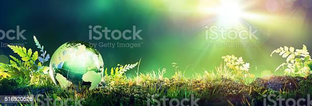 Green globe on moss envinronmental concept picture id516920528?b=1&k=6&m=516920528&s=612x612&h=mdosjakmjpxoqyojrwppls5pxptxb38x7le aj3h5 o=