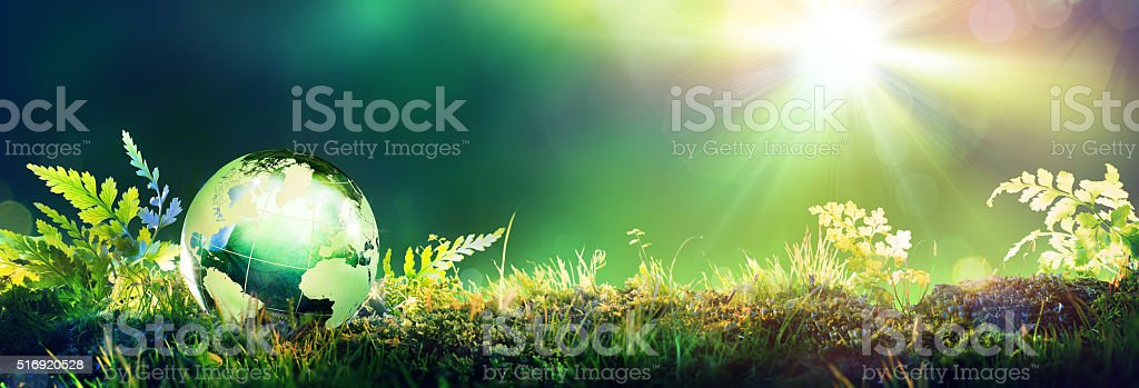 Green Globe On Moss - Envinronmental Concept stock photo