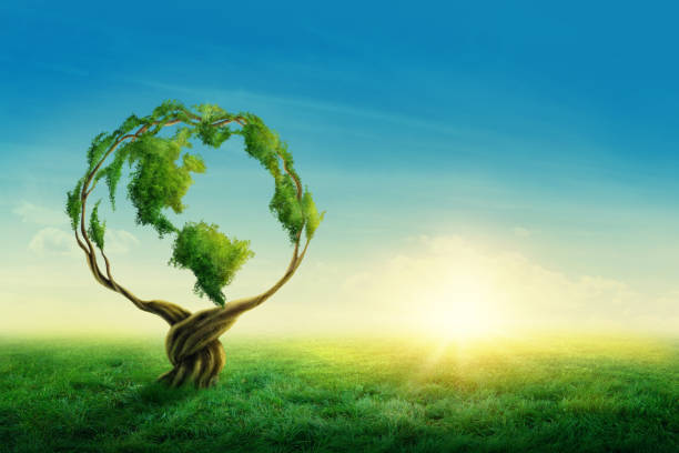 green globe - earth day stock pictures, royalty-free photos & images