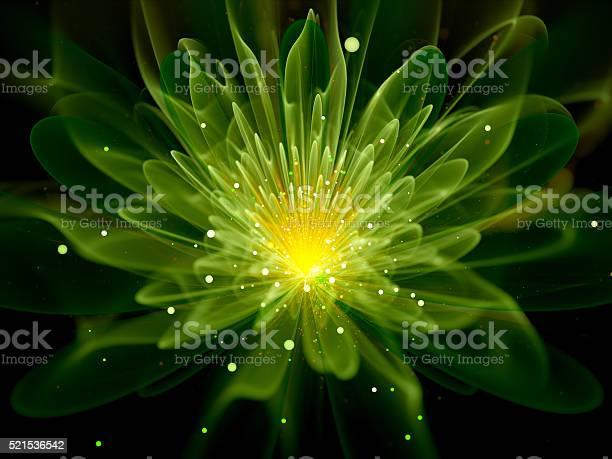Green glowing fractal flower picture id521536542?b=1&k=6&m=521536542&s=612x612&h=1mmnxe3lczughbojynefybxj7eebv eas7a8jmwamu8=