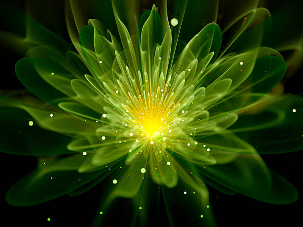 green glowing fractal flower - fractal stock photos and pictures
