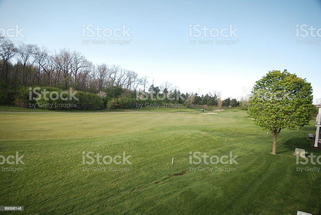 Green Golf Course royaltyfri bildbanksbilder