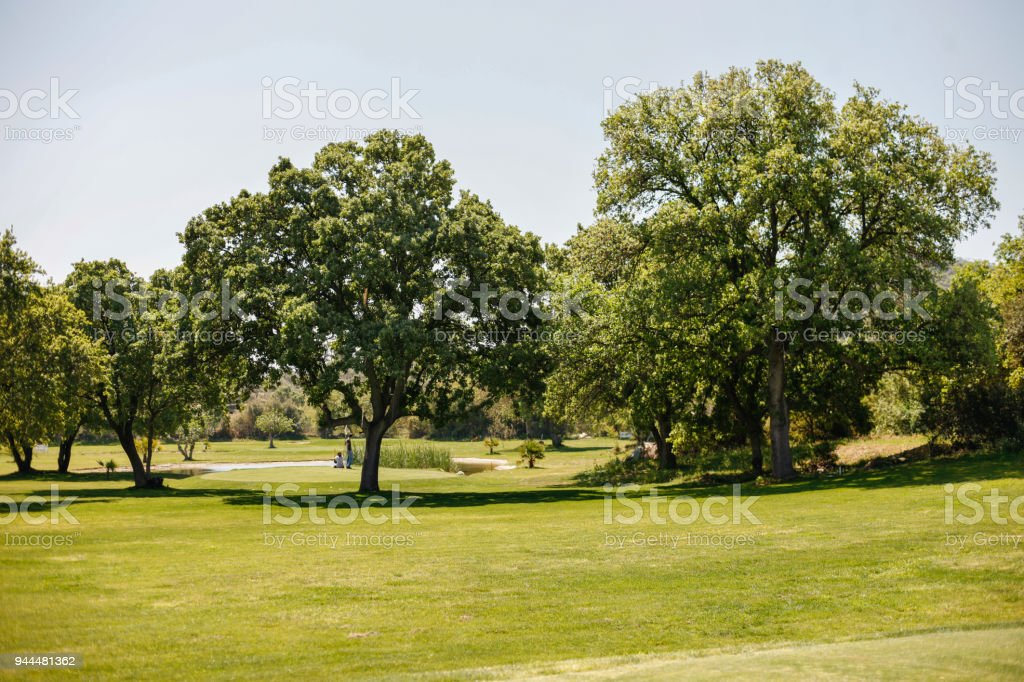 Green Golf Course View stock photo