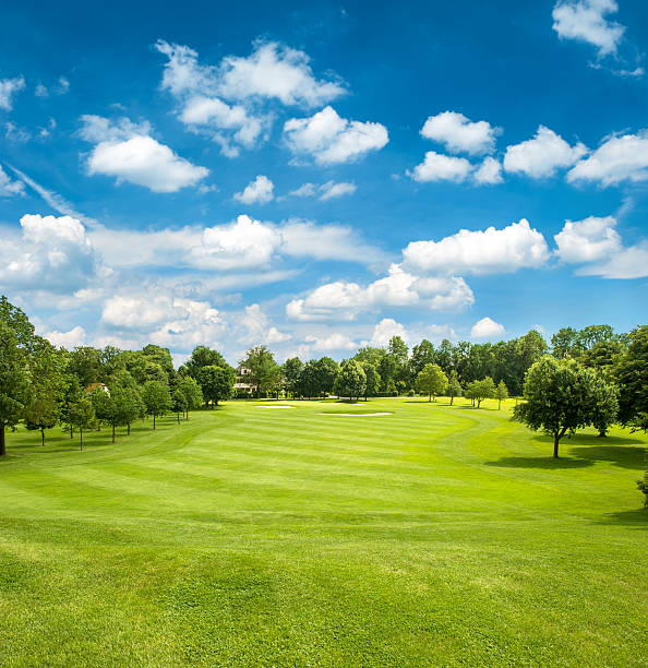 green golf field and blue cloudy sky green golf field and blue cloudy sky. european landscape green golf course stock pictures, royalty-free photos & images