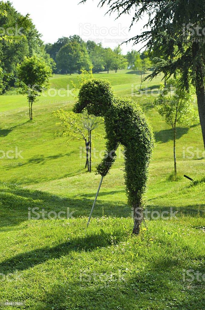 Green-Golfspieler – Foto