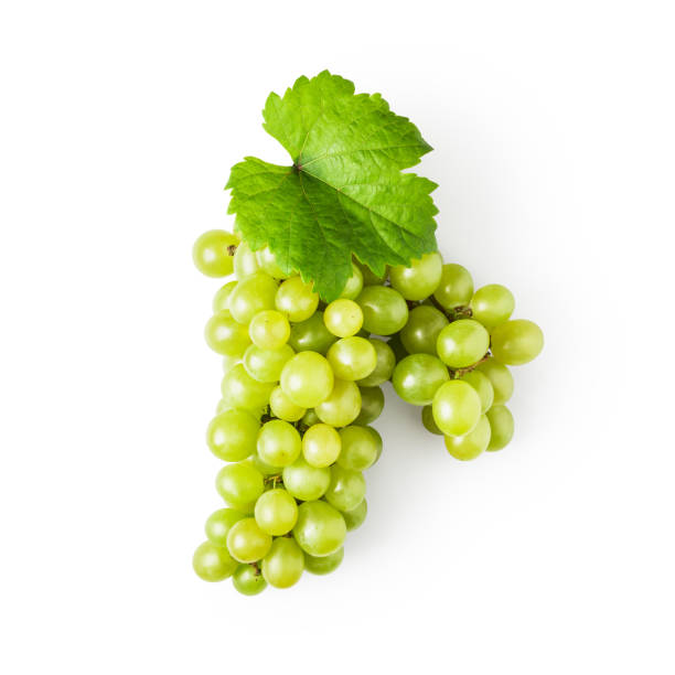 uva verde - grapes fotografías e imágenes de stock