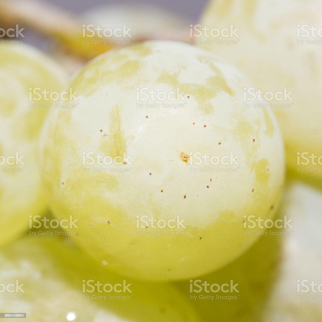 green grapes. close-up stock photo