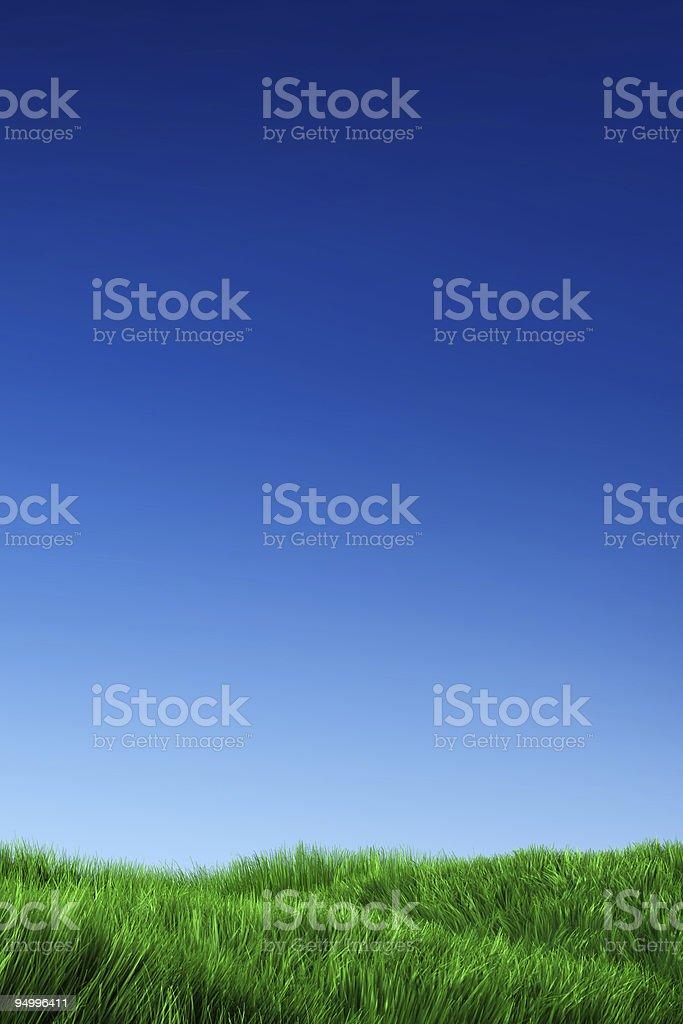Green Grass & Blue Sky royalty-free stock photo