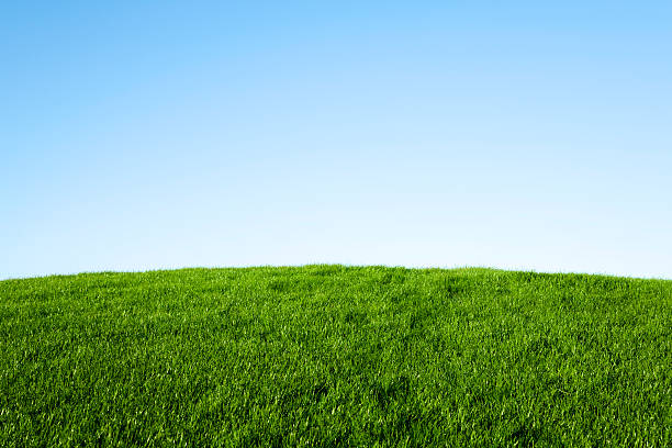 Green Grass and Blue Sky  hill stock pictures, royalty-free photos & images
