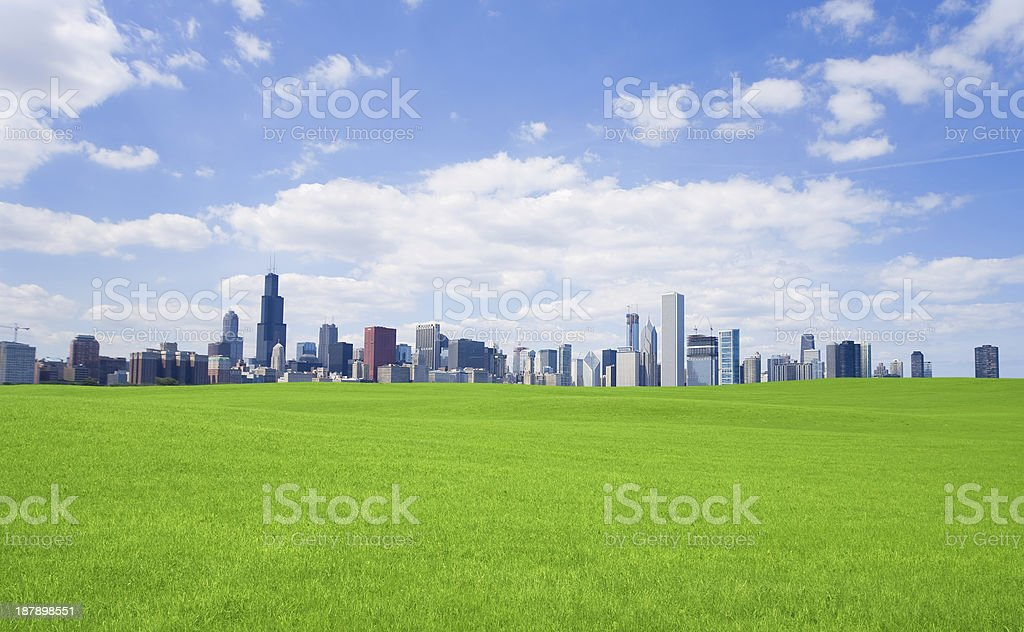 Green grass and  chicago downtown stock photo