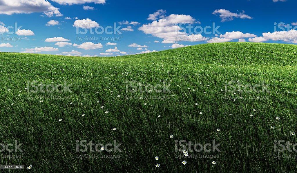 Verde hierba y cielo nublado - foto de stock
