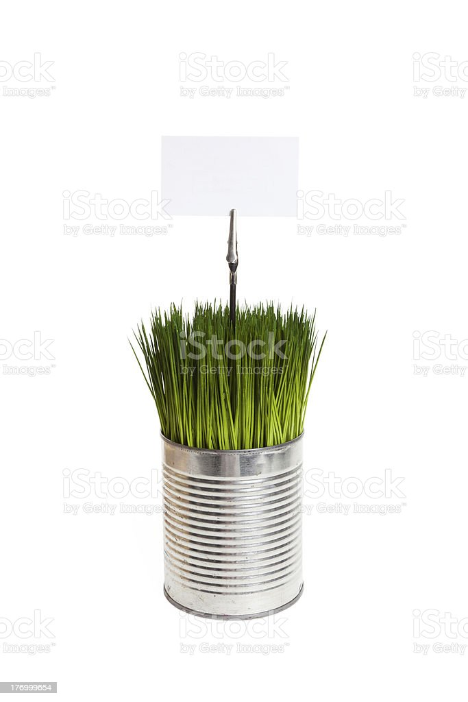 Green grass and metal can royalty-free stock photo