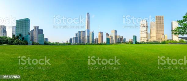 Green Grass And Modern City Skyline Scenery In Shenzhen - Fotografias de stock e mais imagens de Ao Ar Livre