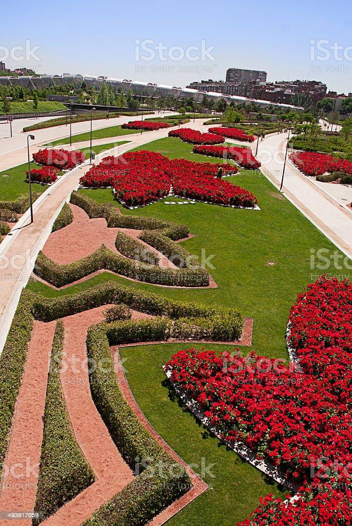 Grünem Gras und rote Rosen – Foto