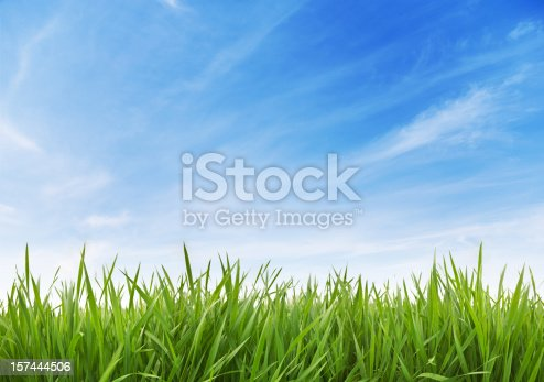 Green Grass and sky XXXL (70 mpx)