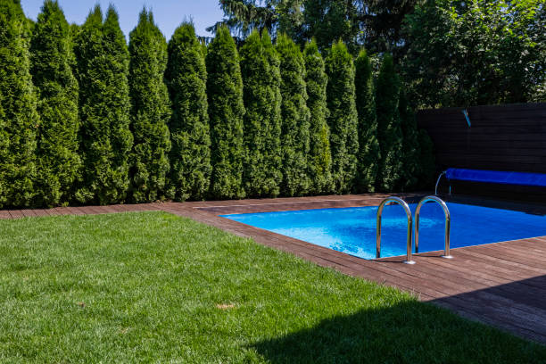 Green grass and trees next to swimming pool on terrace during summer. Real photo Green grass and trees next to swimming pool on terrace during summer. Real photo backyard pool stock pictures, royalty-free photos & images