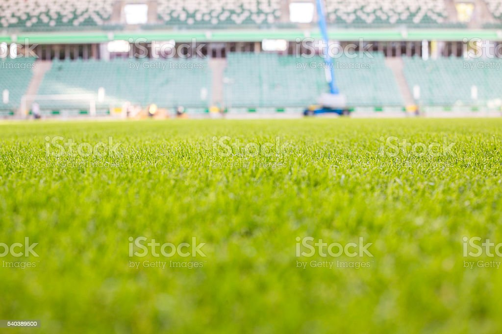 Green grass at modern stadium during sunny day stock photo