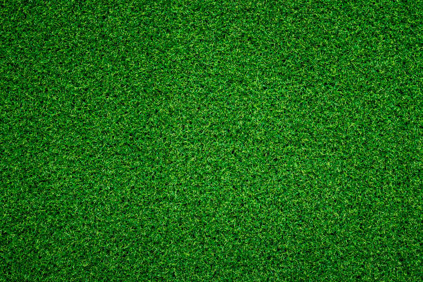 Green grass background Green grass background turf stock pictures, royalty-free photos & images