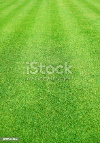 istock Green grass background 483510061