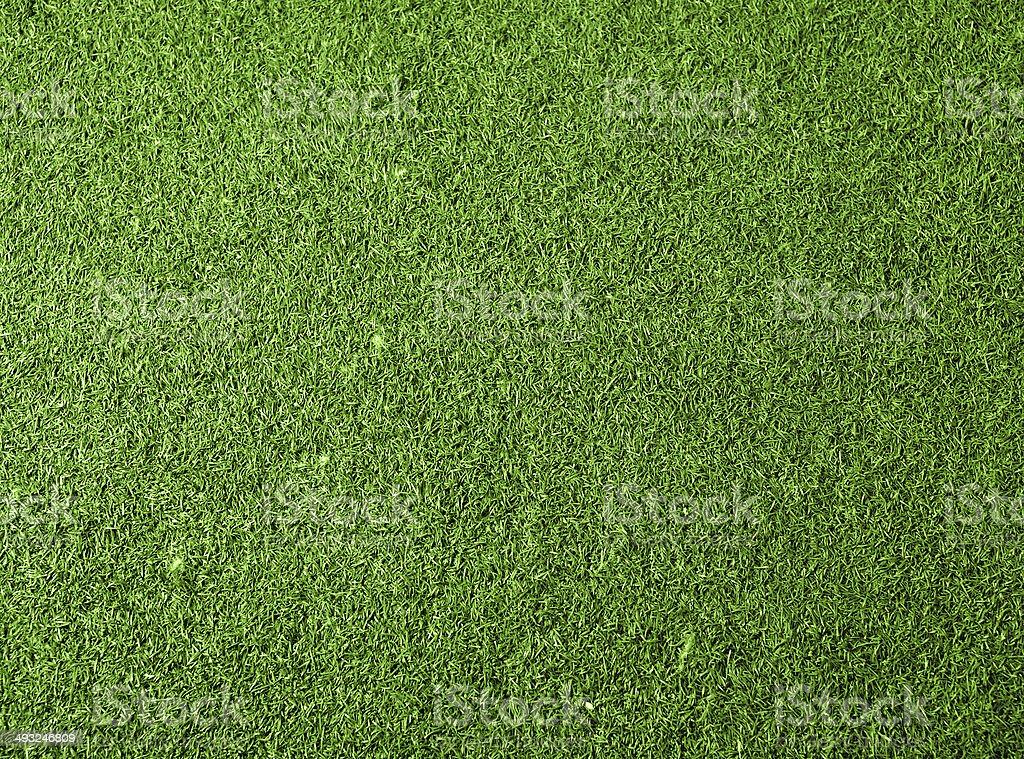 Sfondo verde erba - foto stock