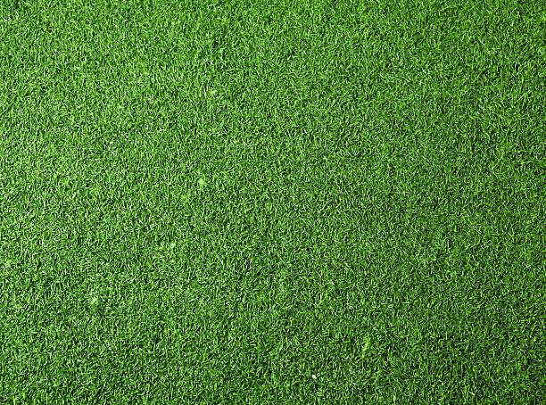 fond vert herbe - partie supérieure photos et images de collection