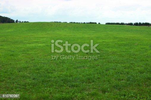 istock Green grass background 510762097
