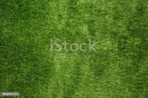 istock Green grass background 859382322