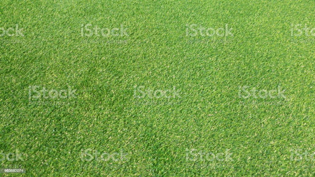 Green grass background - Royalty-free Abstract Stock Photo