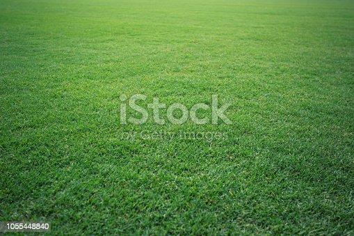 istock Green grass background texture. Golf or football field 1055448840