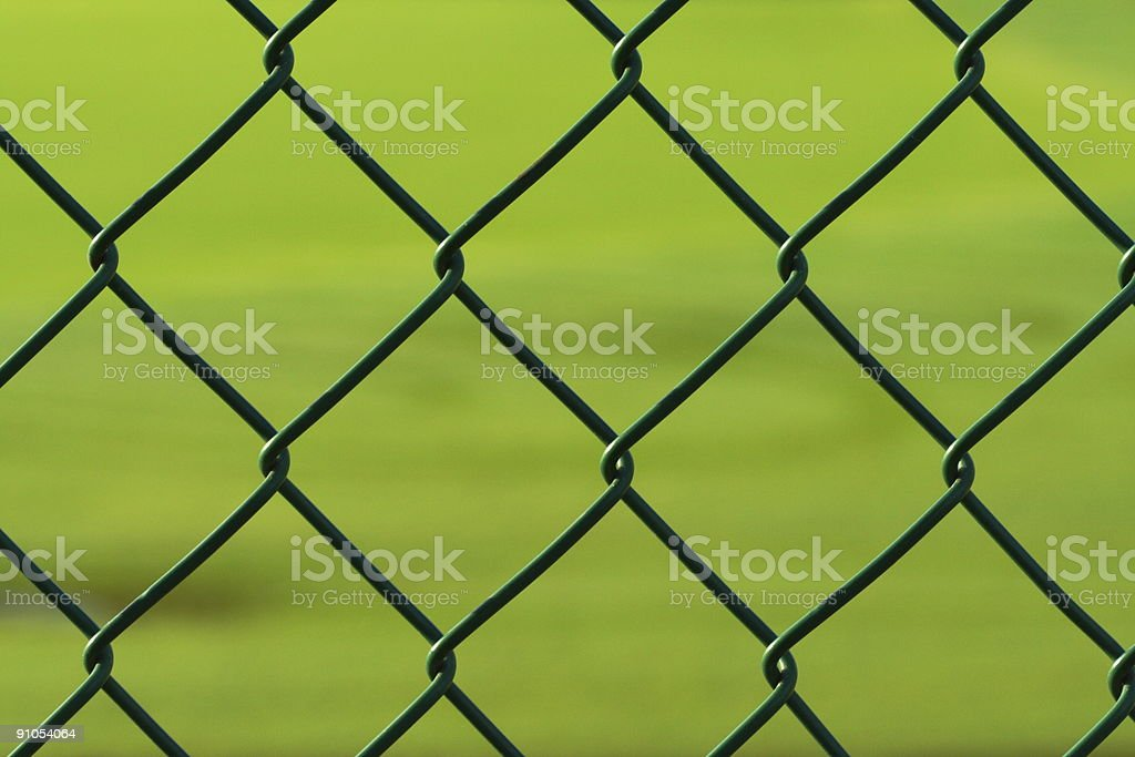 Green Grass behind a Fence royalty-free stock photo