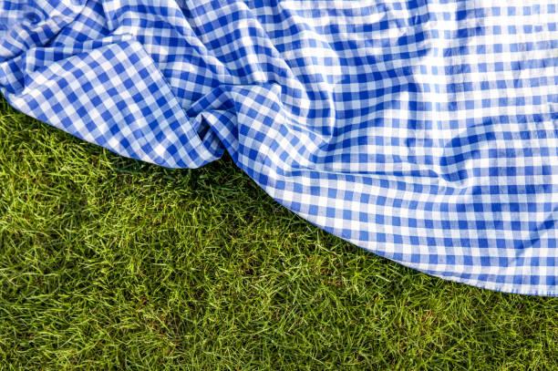Manta de pano de piquenique azul de grama verde verificada - foto de acervo