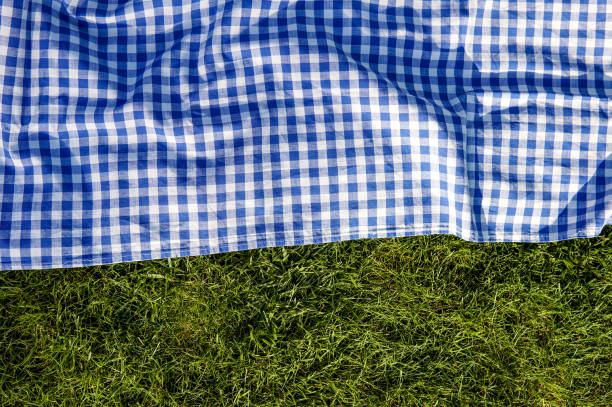 Green grass blue checked picnic cloth blanket stock photo