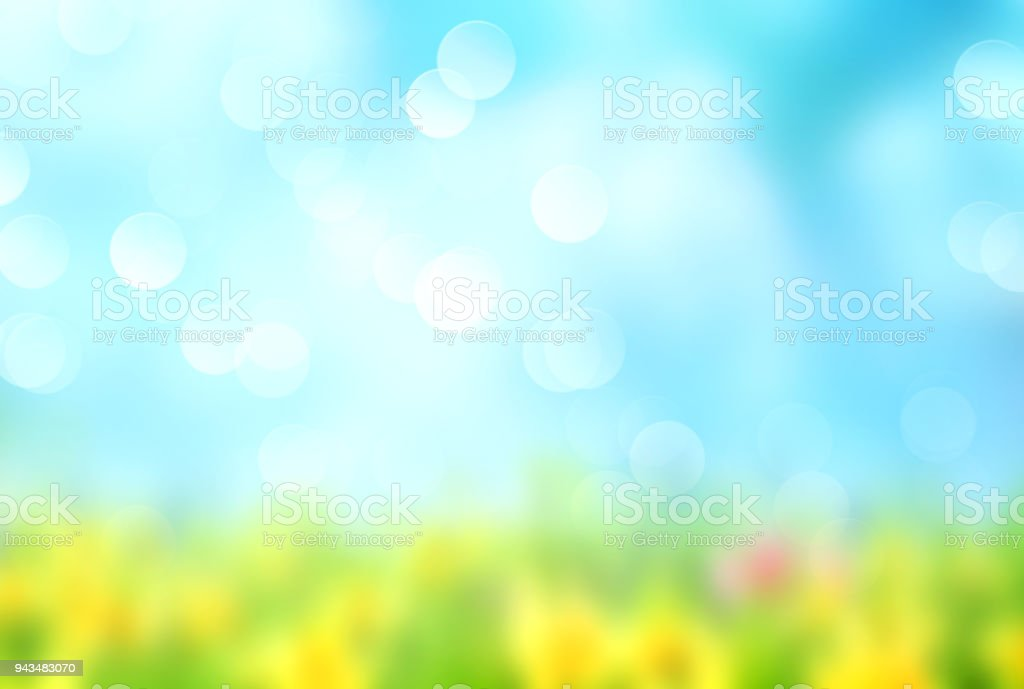 Green grass blue sky blurred background. stock photo