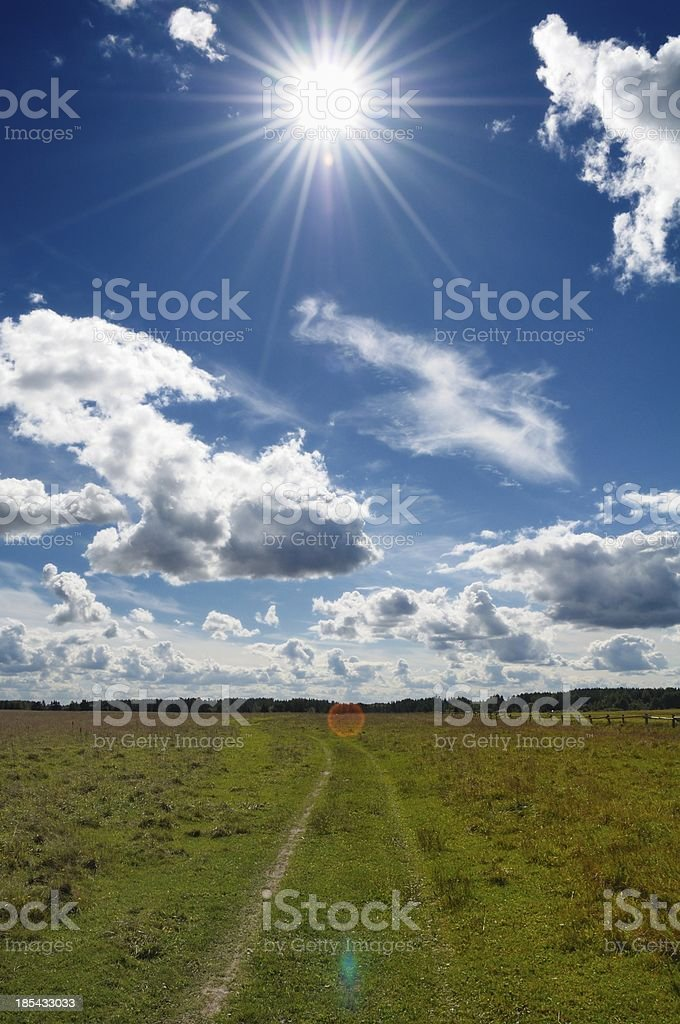 Green Grass Field in Countryside Under Midday Sun royalty-free stock photo