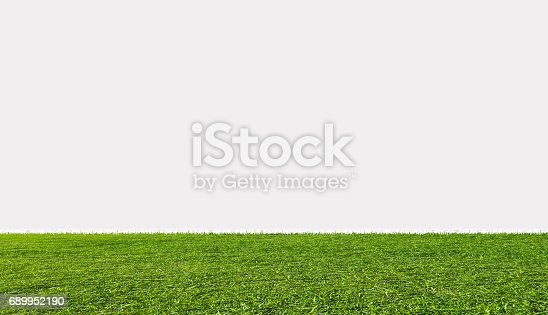Green grass field, isolated on white background
