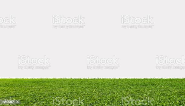 Green grass field isolated on white background picture id689952190?b=1&k=6&m=689952190&s=612x612&h=e2fhstsd0ukun9kmrauja5z3djy6ft41qyh72blqbwc=