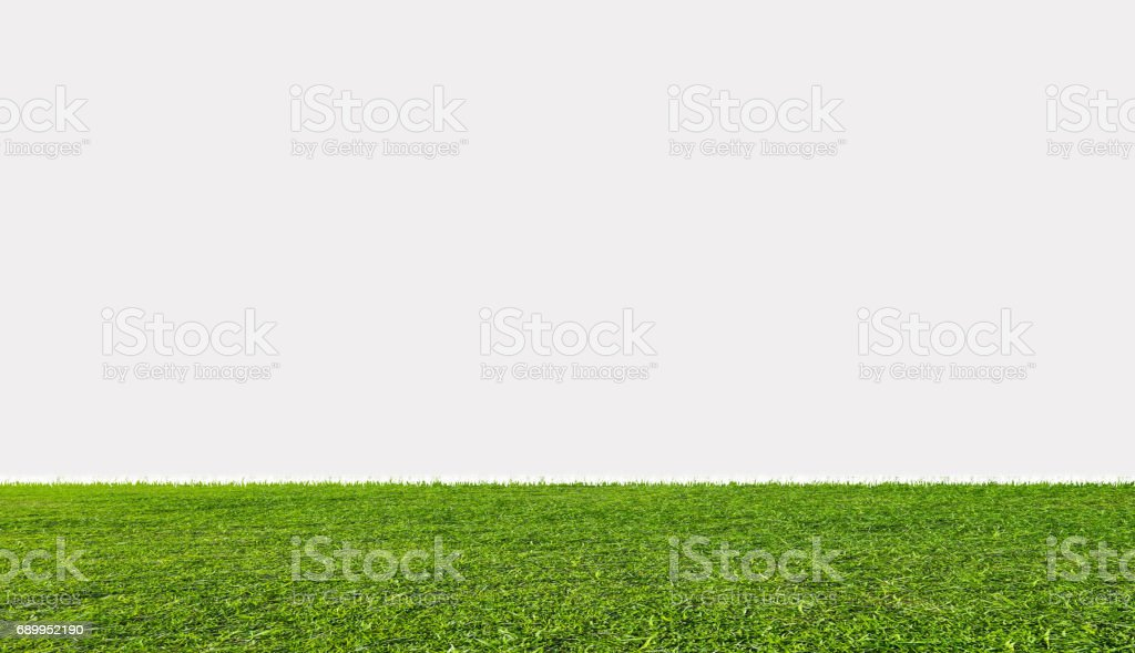 Campo de hierba verde, aislado sobre fondo blanco - foto de stock