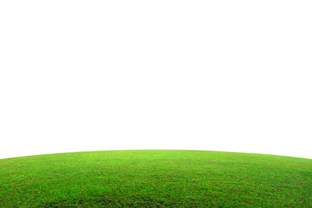 green grass field on mountain isolated on white background. beautiful grassland with slope. ( clipping path ) - возвышенность стоковые фото и изображения