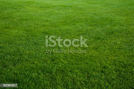 Just a beautifully cut field of summer grass! Perfect for a soft green spring or summer background!